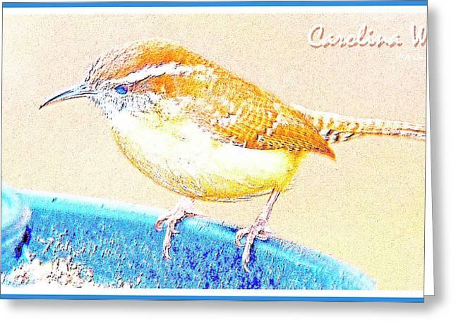 Carolina Wren, Winter Wren On Bird Feeder, Digital Art Greeting Card by A Gurmankin