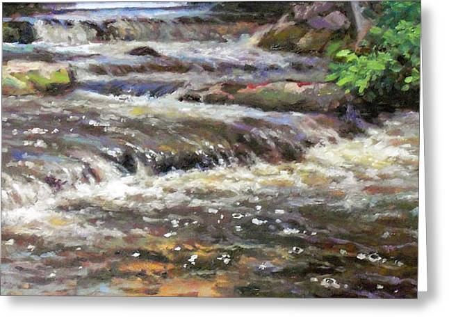 Cedar Creek Greeting Card by Larry Seiler