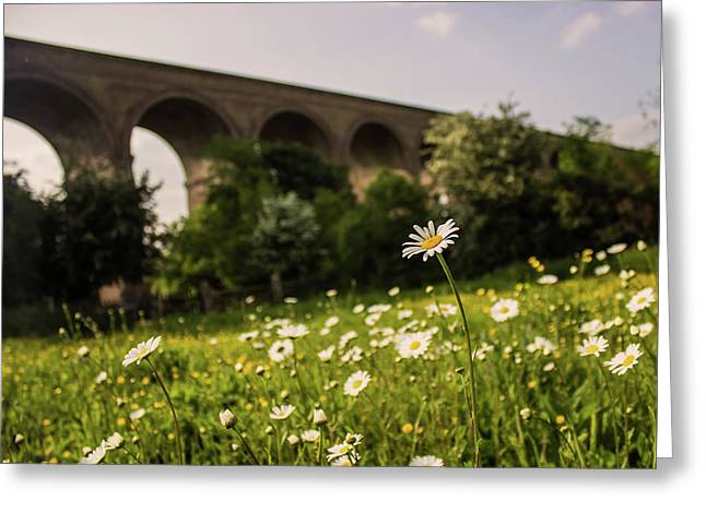 Chappel Viaduct Greeting Card