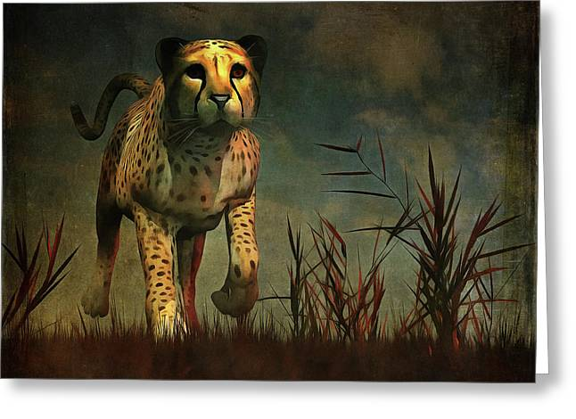 Cheetah Hunting During The African Night Greeting Card