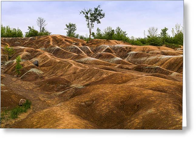 Cheltenham Badlands In Caledon Greeting Card by Panoramic Images