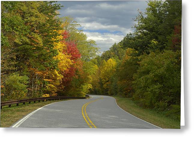 Cherohala Skyway In Autumn Color Greeting Card by Darrell Young