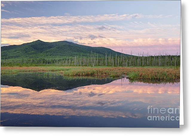 Cherry Mountain - Pondicherry Wildlife Refuge New Hampshire Greeting Card by Erin Paul Donovan