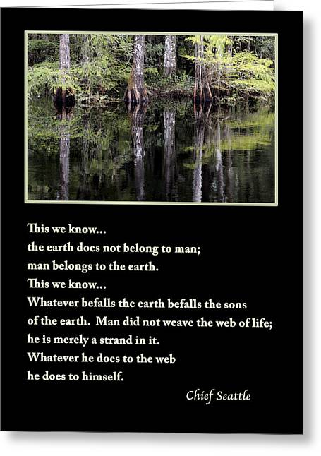 Tree Huggers Greeting Cards - Chief Seattle Greeting Card by Nancy Greenland