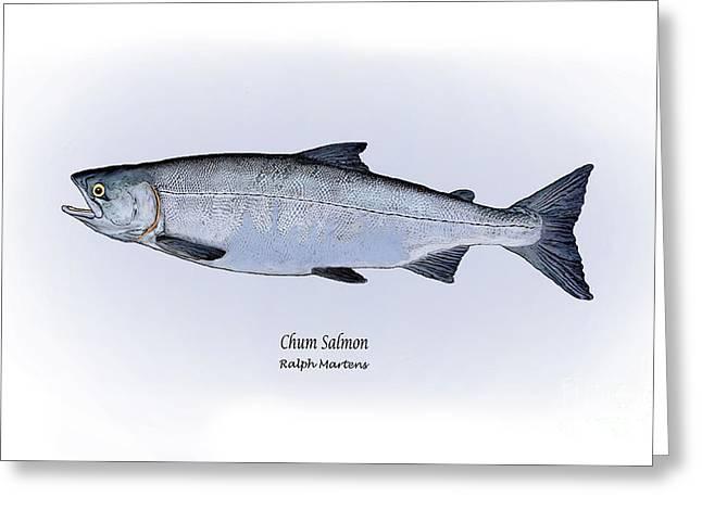 Chum Salmon Greeting Card by Ralph Martens