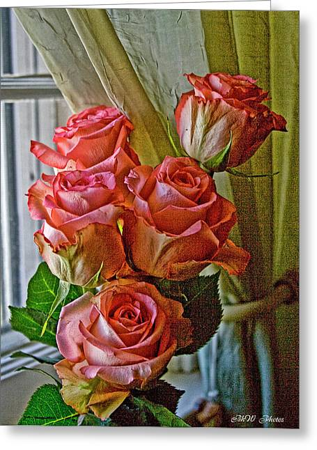 Greeting Card featuring the photograph Cindy's Roses by Bonnie Willis