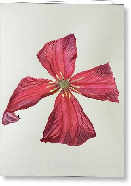 Clematis Greeting Card by Marina Garrison