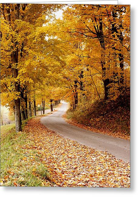 Cloudland Rd., Woodstock Vt Greeting Card by Butch Lombardi