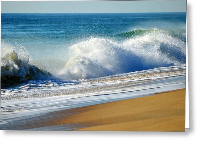 Coastal Bliss Greeting Card by Dianne Cowen