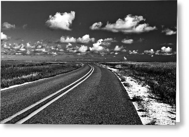 Cocodrie Highway Greeting Card by Scott Pellegrin