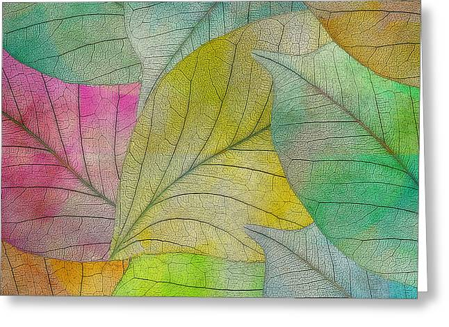 Greeting Card featuring the digital art Colorful Leaves by Klara Acel