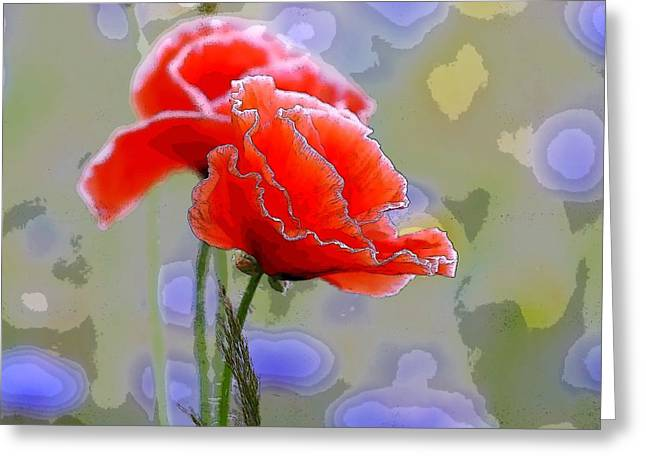 Colors Of Spring - Poppies 11 Greeting Card by Celestial Images