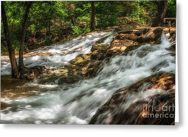 Cooling Waters At The Chickasaw National Recreation Area Greeting Card