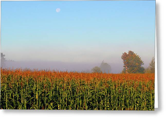 Cornfield Moonset Greeting Card