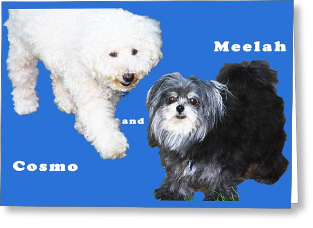 Cosmo And Meelah 1 Greeting Card