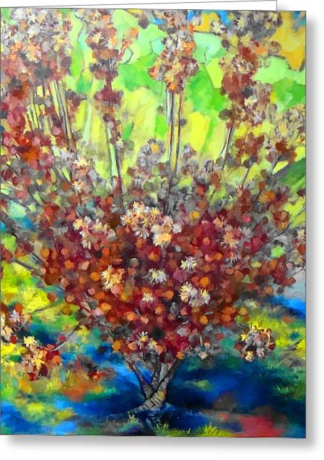 Cotinus Coggygria Greeting Card