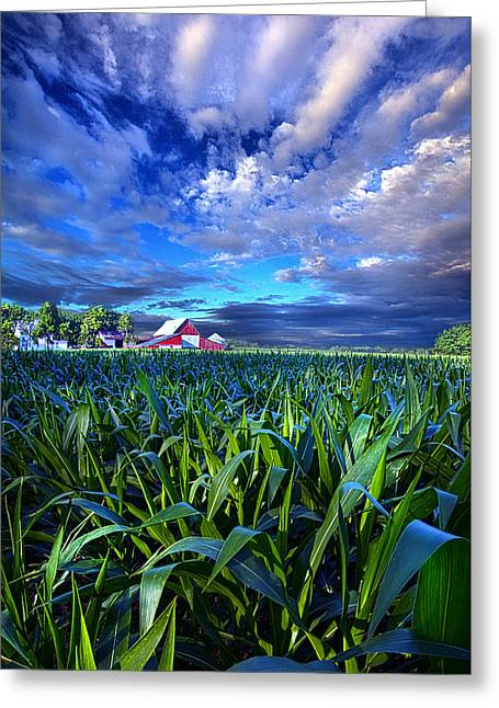 Corn Greeting Cards - Country Living Greeting Card by Phil Koch