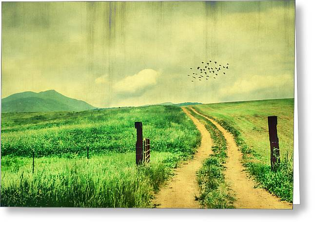 Paradise Meadow Greeting Cards - Country Roads Greeting Card by Darren Fisher