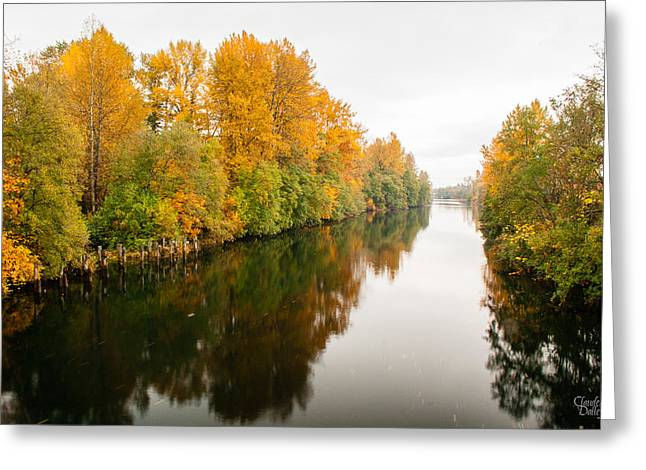Courtenay River Greeting Card