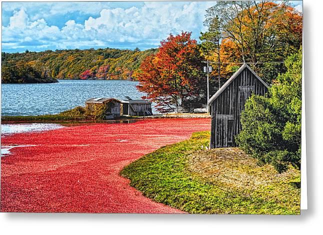 Cranberry Bog Greeting Card