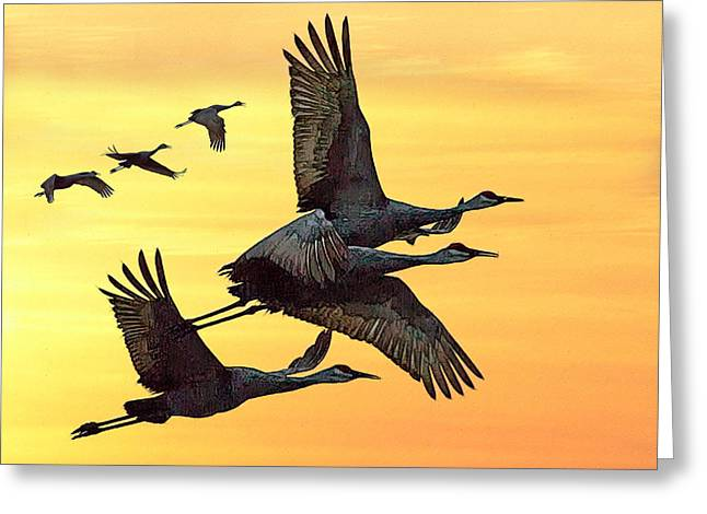 Cranes At Sunset Greeting Card by Larry Linton