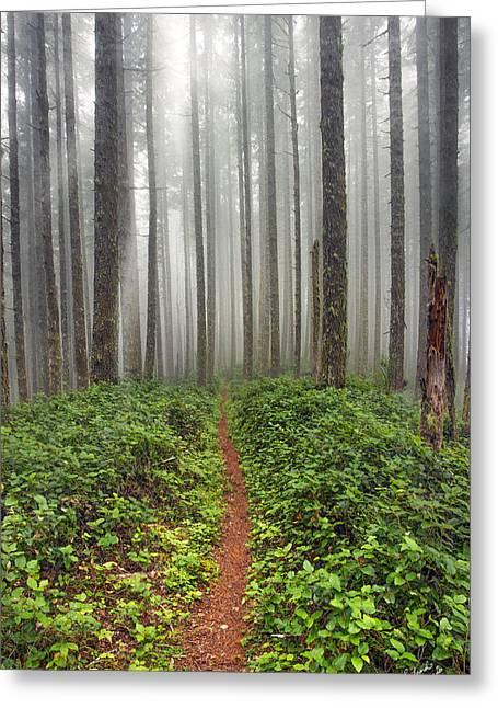 Cummins Wilderness Hike Greeting Card
