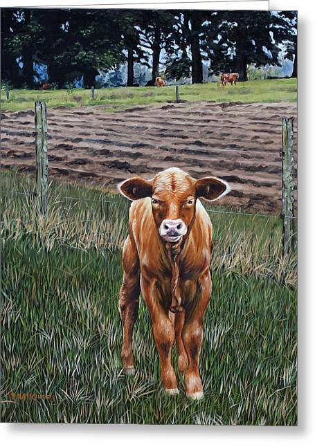 Curious Calf Greeting Card by Rick McKinney