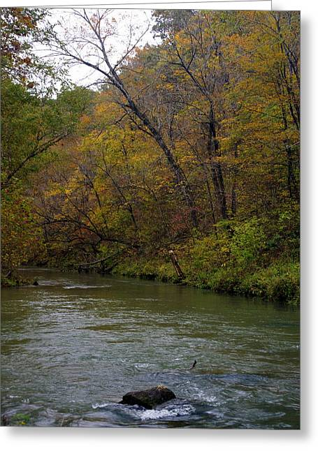 Marty Koch Photographs Greeting Cards - Current river 8 Greeting Card by Marty Koch