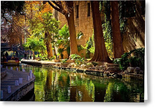 Cypress Trees In The Riverwalk Greeting Card