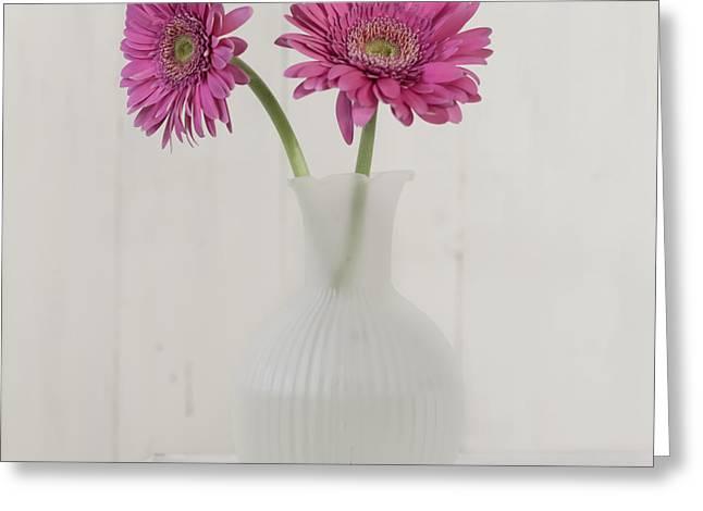 Greeting Card featuring the photograph Gerbera Daisy Love by Kim Hojnacki