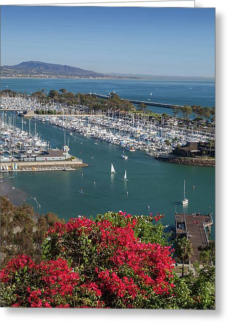 Dana Point Harbor Greeting Card by Cliff Wassmann