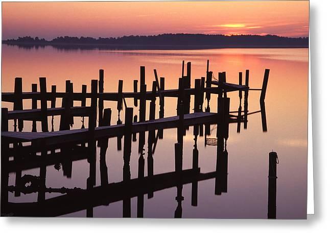 Dawn On The Bay Greeting Card by Eric Foltz