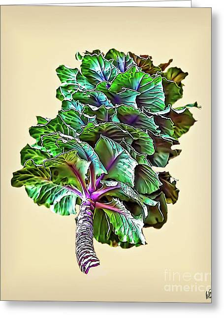Greeting Card featuring the photograph Decorative Cabbage by Walt Foegelle