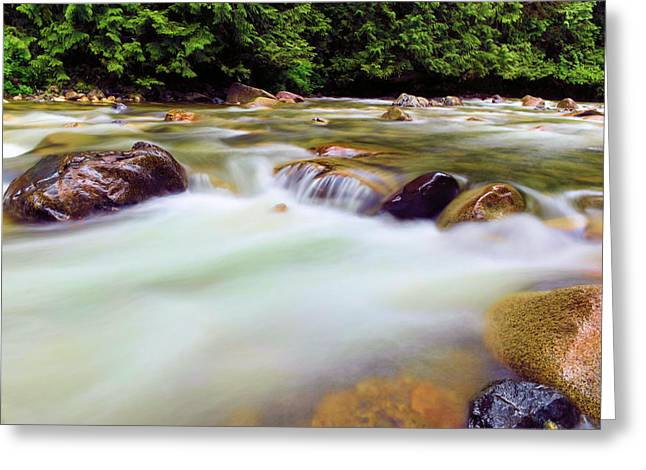 Denny Creek Greeting Card by Jeff Swan