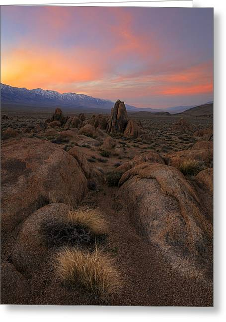 Desert Dreaming Greeting Card by Mike Lang