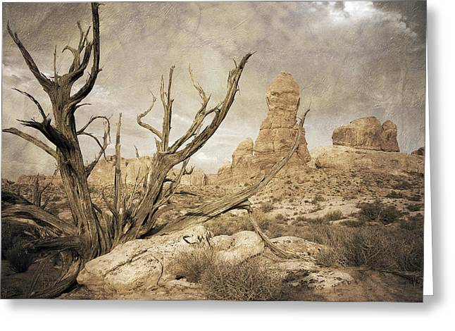 Landscape Digital Art Greeting Cards - Desert Tree Greeting Card by Mike Irwin