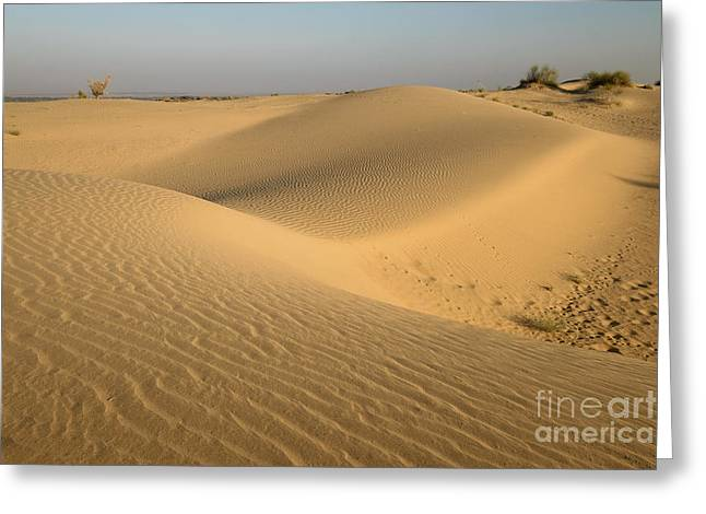 Greeting Card featuring the photograph Desert by Yew Kwang