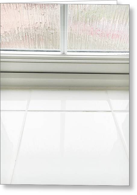 Double Glazed Window Greeting Card by Tom Gowanlock