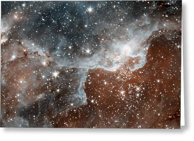 Dr22 In The Cygnus Region Of The Sky Greeting Card by American School