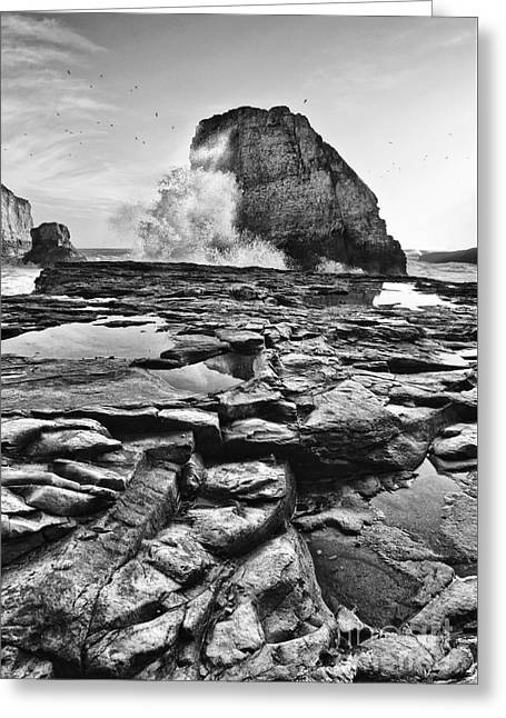 Dramatic View Of Shark Fin Cove Greeting Card by Jamie Pham