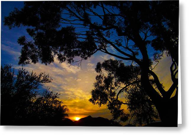 Dream Sunrise Greeting Card by Mark Blauhoefer