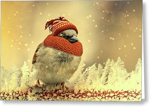 Dressed For Winter Greeting Card
