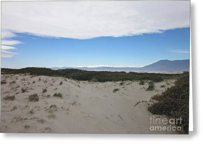 Dune In Roquetas De Mar Greeting Card