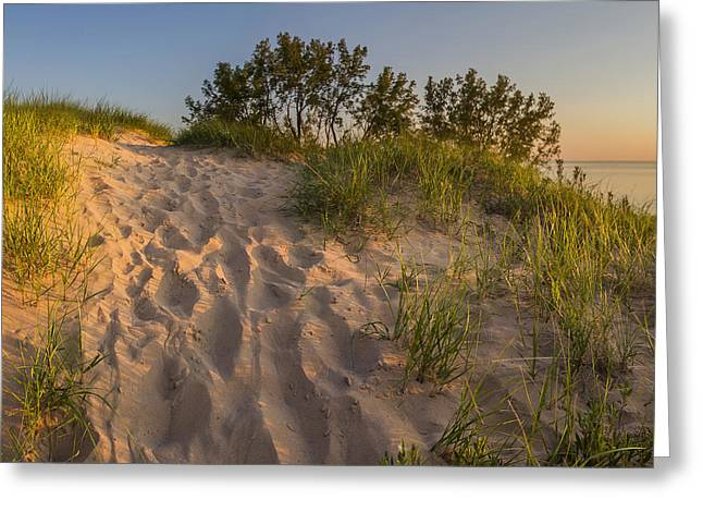 Dunegrass At Sunset Greeting Card by Twenty Two North Photography