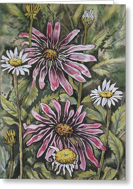Echinachea And  Daisies Greeting Card
