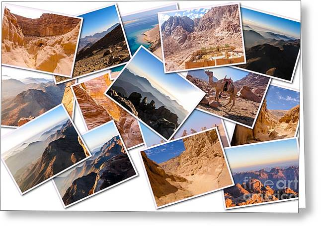 Egypt Sinai Peninsula Collage Greeting Card by Benny Marty