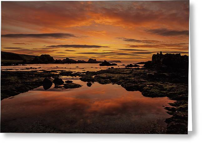 Evenings End Greeting Card by Roy McPeak
