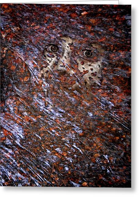 Face In The Stream Greeting Card
