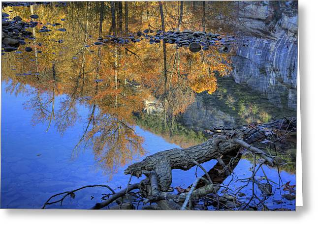 Fall Color At Big Bluff Greeting Card by Michael Dougherty