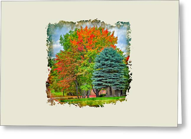 Fall Colors Greeting Card by John M Bailey